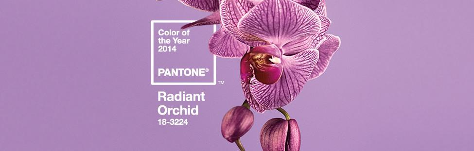 Цвет 2014 Pantone